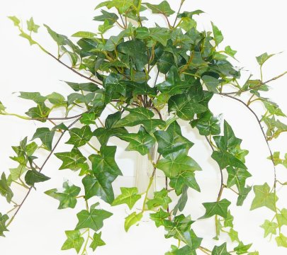 artificial-ivy